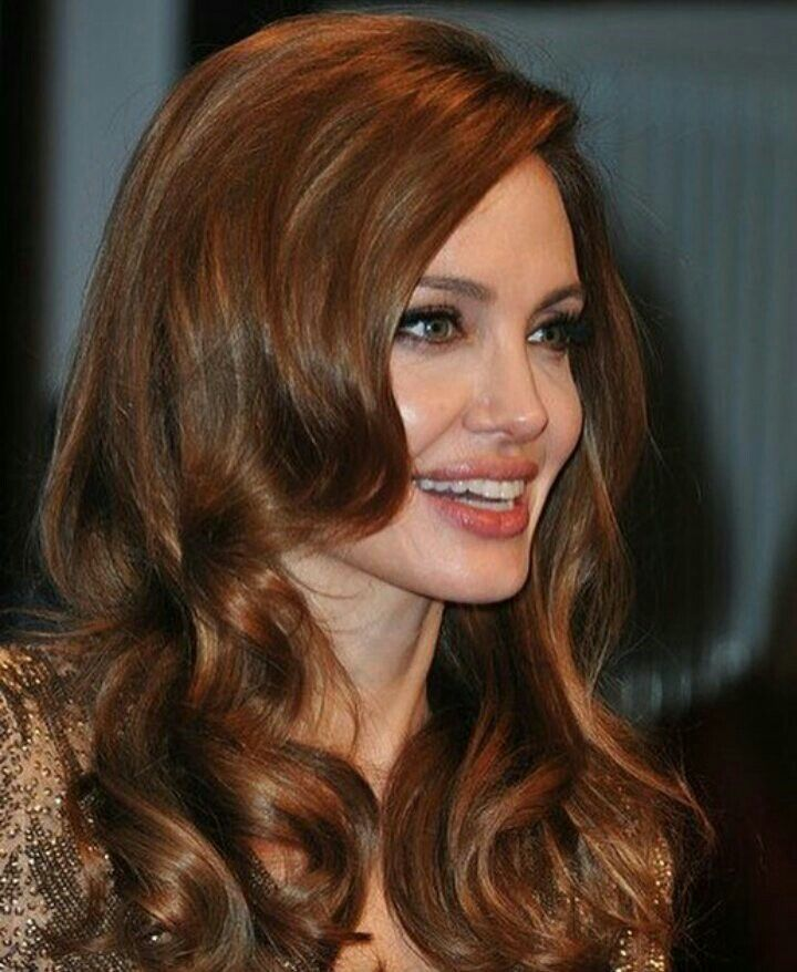 Pin By Ralph Knox On Angelina Jolie Amp Chesnut Hair Color
