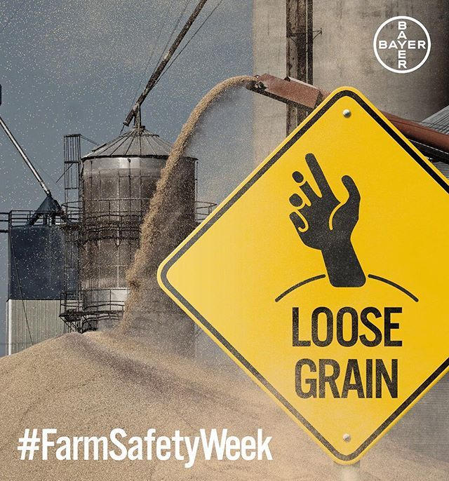 Standing on moving grain is deadly and can bury a worker in seconds. Prohibit walking down grain and similar practices used to make grain flow. #FarmSafetyWeek #grainbins #harvest