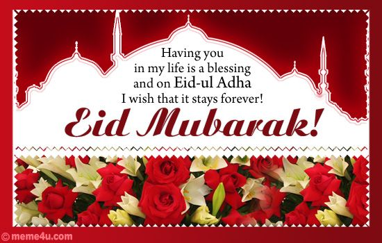 Cool Friend Eid Al-Fitr Greeting - 9f50ed5c014a21fa520facd01f6d878f  Photograph_477938 .jpg