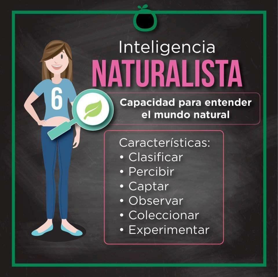 Sabías Qué Inteligencias Múltiples Inteligencia Naturalista Cuál Inteligencia Tienes Improve Teaching Life Facts Teaching