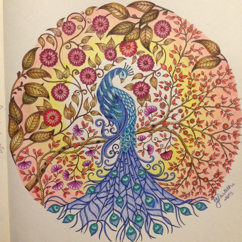 Zendoodle coloring enchanting gardens - Coloring Johanna Basford Peacock Secret Garden