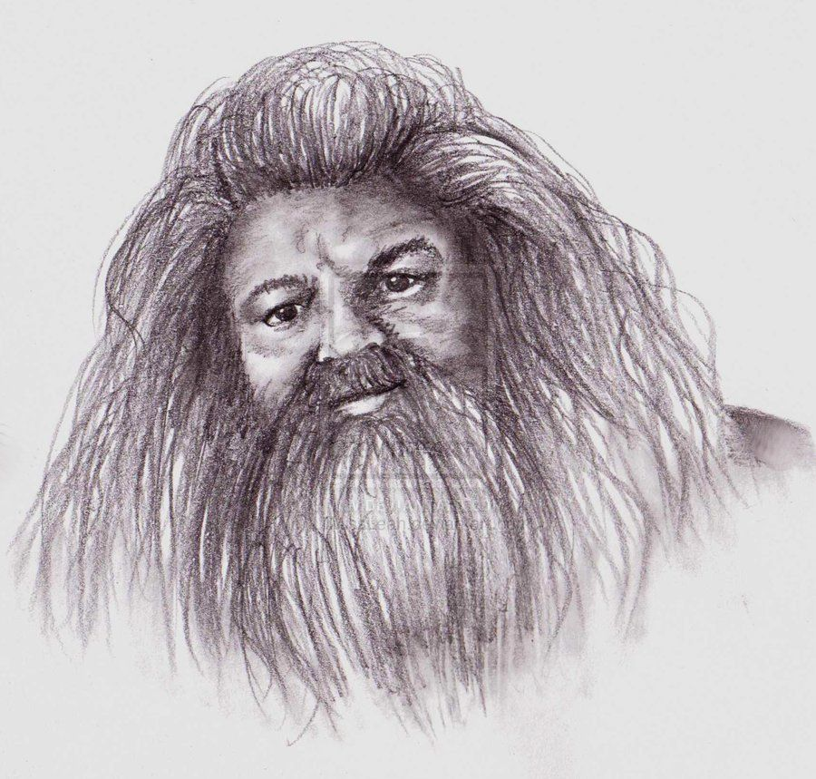 Pencil drawings of luna lovegood rubeus hagrid by lilmissleah on deviantart art - Harry potter dessin ...