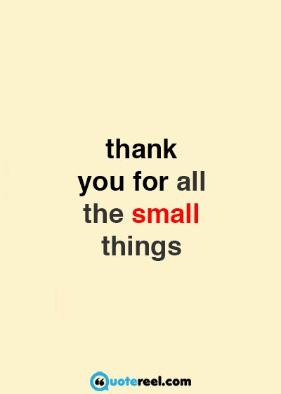 thank you quotes to express appreciation and gratitude thank