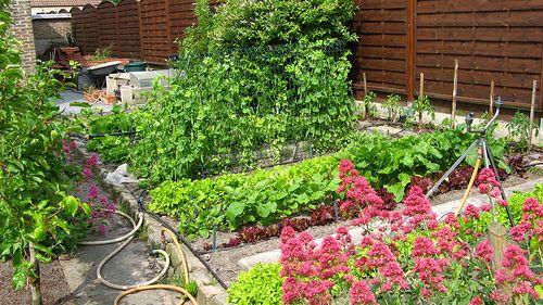 Jardin printemps 2009-3 | Vue du jardin au printemps : le po… | Flickr