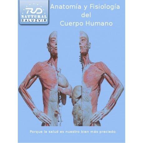 best Anatomia Del Cuerpo Humano Pdf image collection