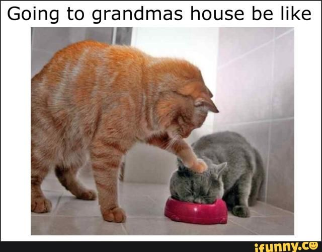 icanteatnomore, grandmashouse, grandmas, eat