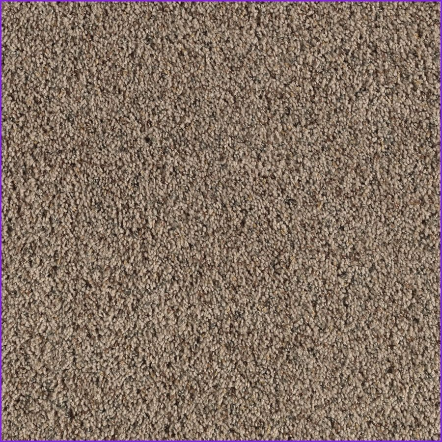 Awesome Lowes Outdoor Rugs Lowes Outdoor Rugs Carpet Samples Textured Carpet