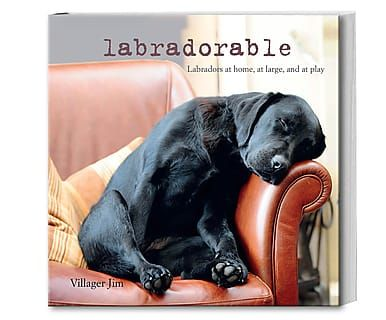 Coffee Table Book Labradorable