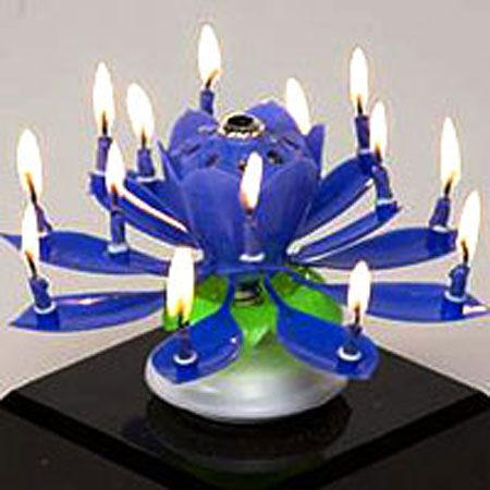 Musical Flower Birthday Candle This Is Best B Day Yetmusic Sparkler Flame Spinning Lots Of Candles Super Clever