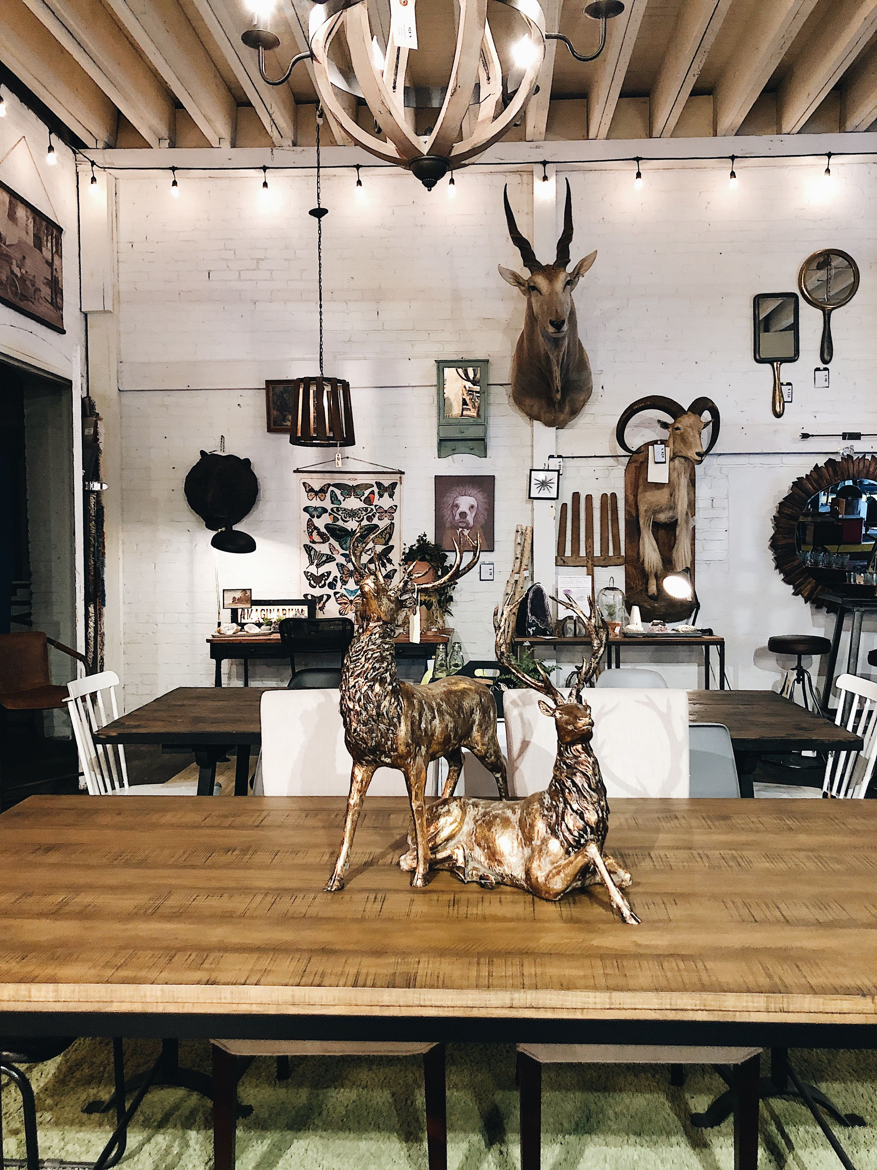 Bring The Beauty Of The Outdoors Indoors With Our Wide Array Of Animal Themed Accessories Home Decor Industrial House Home Furnishings