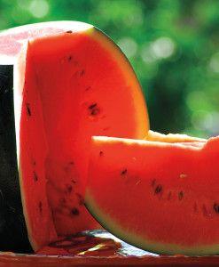 Sugar Baby Organic Watermelon Seeds How To Grow 400 x 300