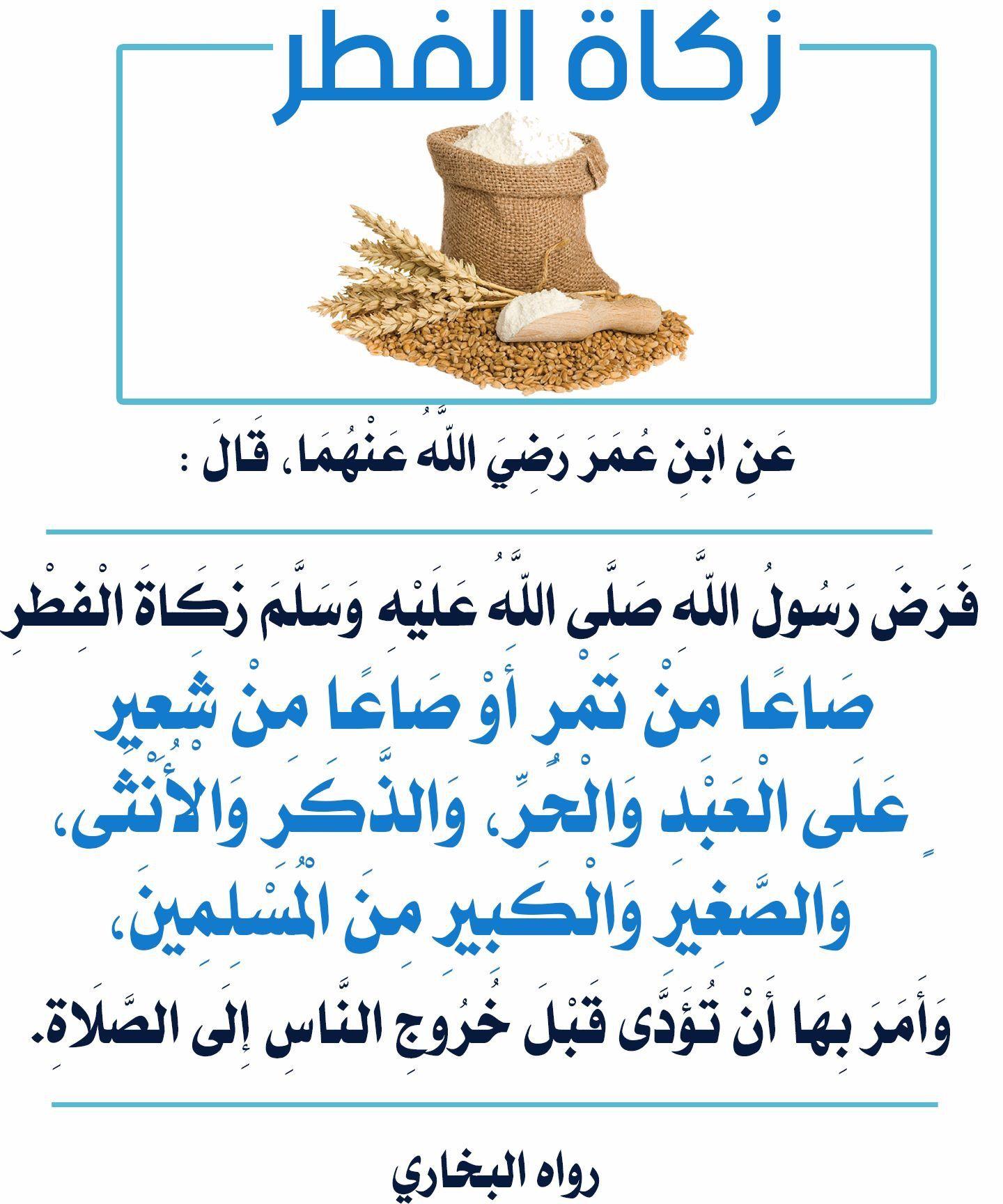 Pin By The Noble Quran On Allah God Islam Heaven Quran Miracles Prophets Islamic Posts Hadith Prayer Macca Makhah Salah Reminder Jannah Hijab Ramadan Islam Matzo
