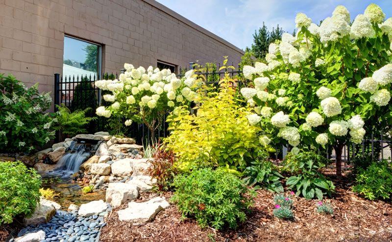 BLC Shop100001 Commercial landscaping, Landscape