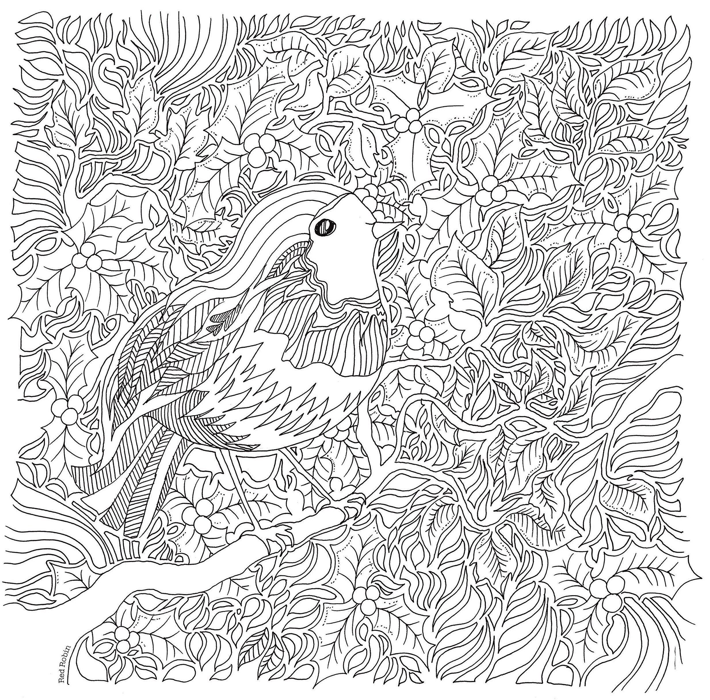 birdenchantedforestcoloringbook 2468×2431