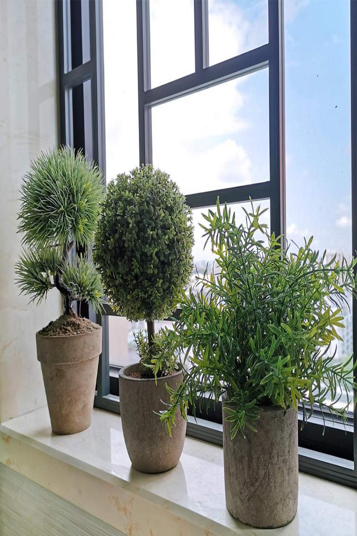 Winlyn 3er Pack Kunstliche Kunststoff Mini Pflanzen Buchsbaum Topiary Baume Straucher Gefalschte Grune Rosmarin Pflanz In 2020 Mini Plants Rosemary Plant Topiary Trees