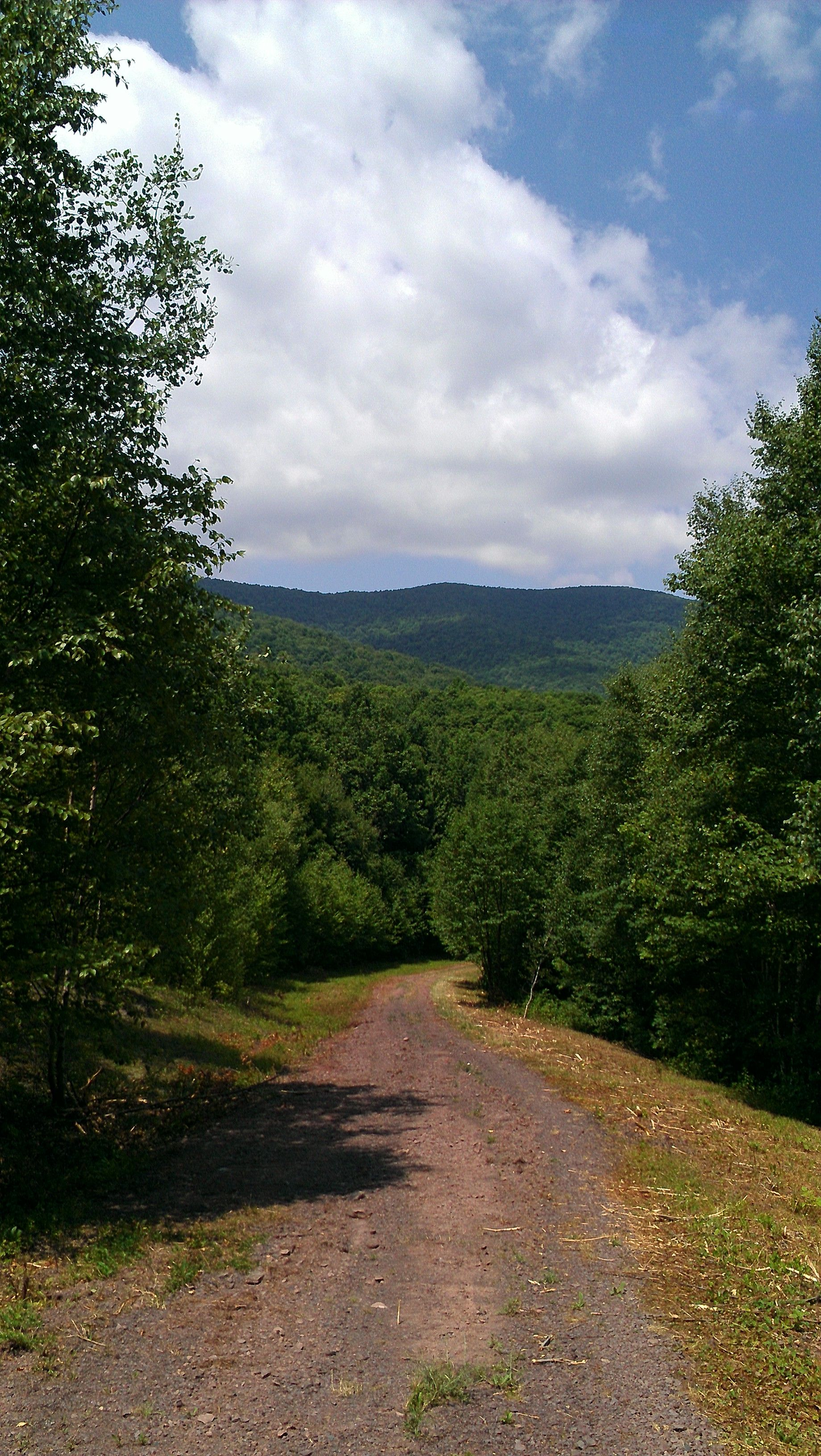 "The "" Catskills """