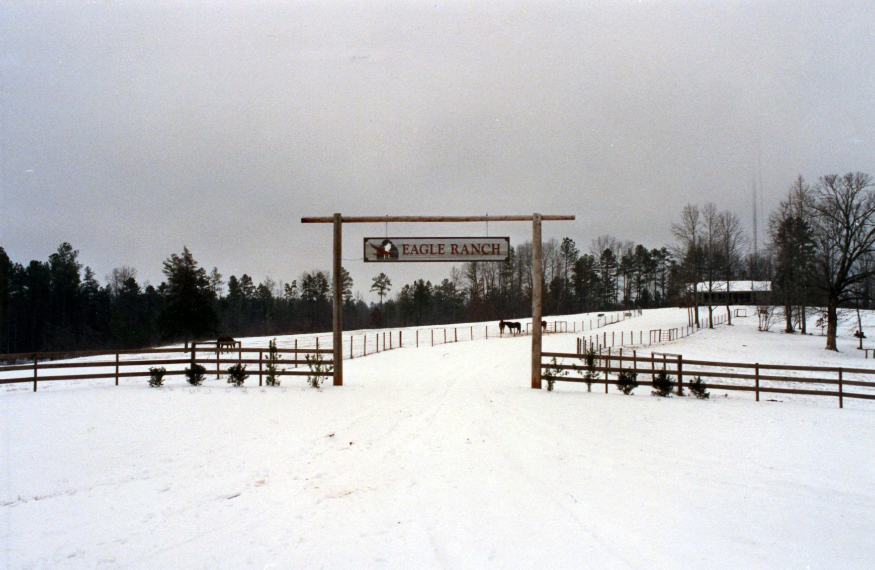 Throwback Thursday The Recent Snow Made Us Want To Dig This Old Photo Up From When It Snowed In The Late 80 S Check Out Old Photos Old Signs How To Make