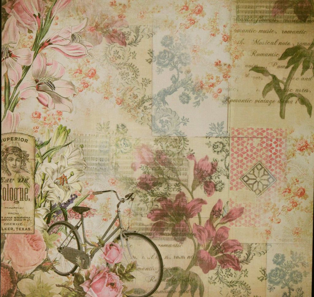 Scrapbook paper collections - The Paper Studio 12 X 12 Kirby Teesdale Botanical Collection Flat Scrapbook Paper