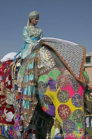 Elephant Festival, Jaipur, India by Jeremy Richards