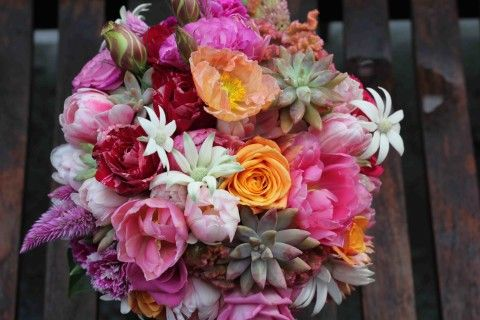 Blooms by Bethan bouquet of double tulips, succulents, Matisse roses and flannel flowers