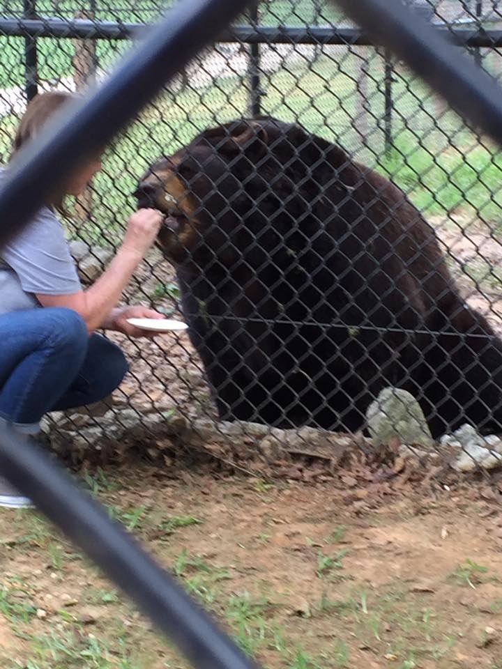 #BLT Baloo eating cake with Jama at Leo's Memorial