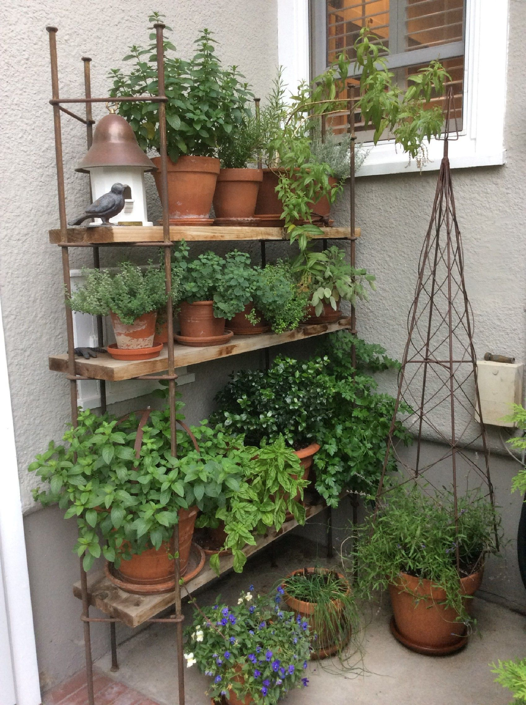 10 Patio Herb Garden Ideas Most Brilliant And Attractive Small