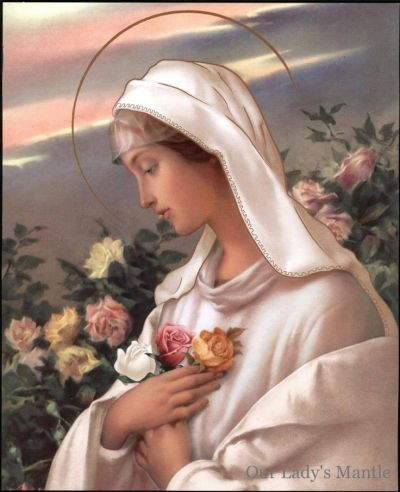 Resultado de imagem para madonna della rosa mistica