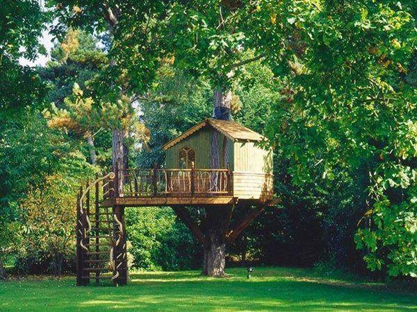 casas-arboles-19 HOUSE Pinterest Casas en arboles, Casas y - casas en arboles