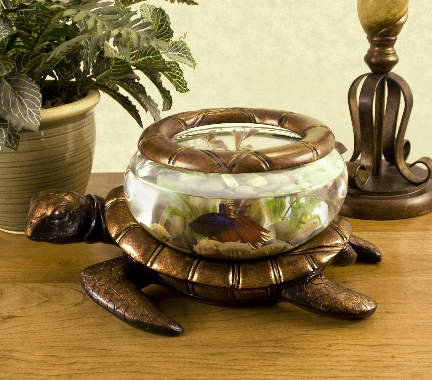 Cool Aquariums For Sale Spiffy Pet Products Fishbowl Fish Tanks And Turtle