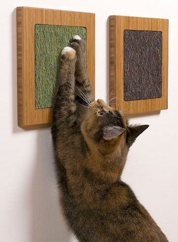 modern designs for cats: Bamboo Amber Vertical with Mohair Frog and Mohair Gerbil