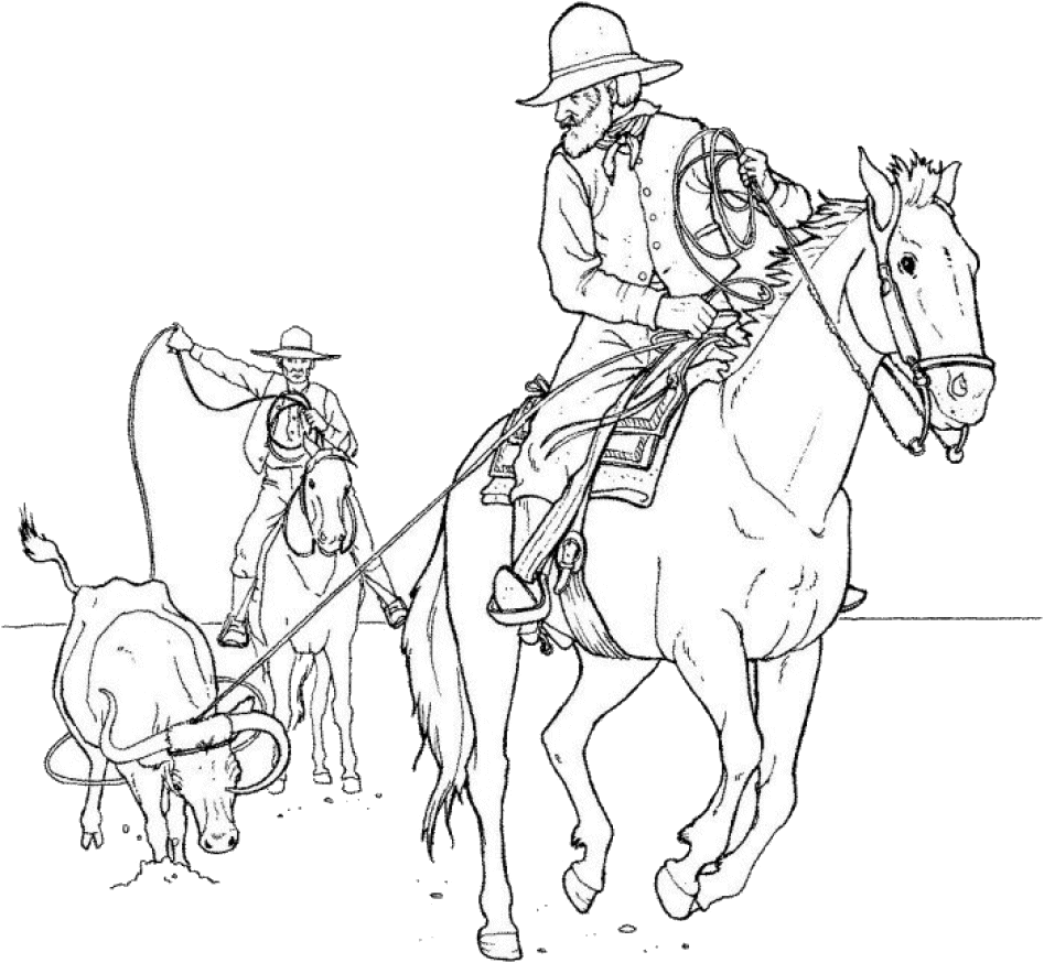While Mine Bull Riding | Horse coloring pages, Horse adult ...