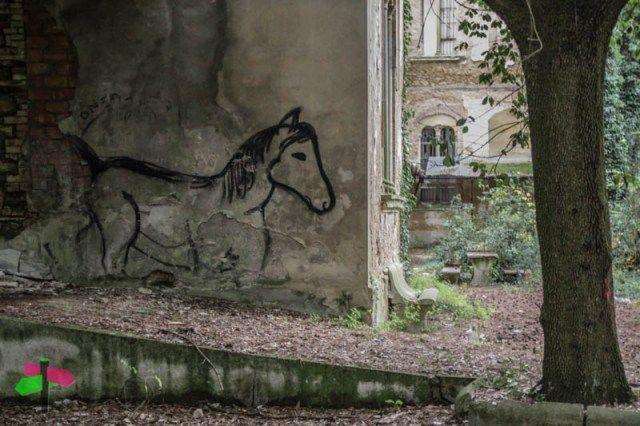 Ex Manicomio di Volterra, #Toscana ▲ A photographic journey into the past of the abandoned mental asylum of #Volterra #Tuscany #photography #urbandecay #abandoned #urbex #urbanexploration #asylum #travel #offthebeatenpath Ph. © smartraveller blog