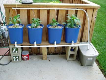Patio hydroponics home hydroponics pinterest hydroponics growing bell peppers and drip - Hydroponic container gardening ...
