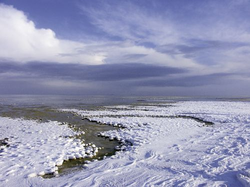 wie gemalt ... erlebt das Wattenmeer im Winter