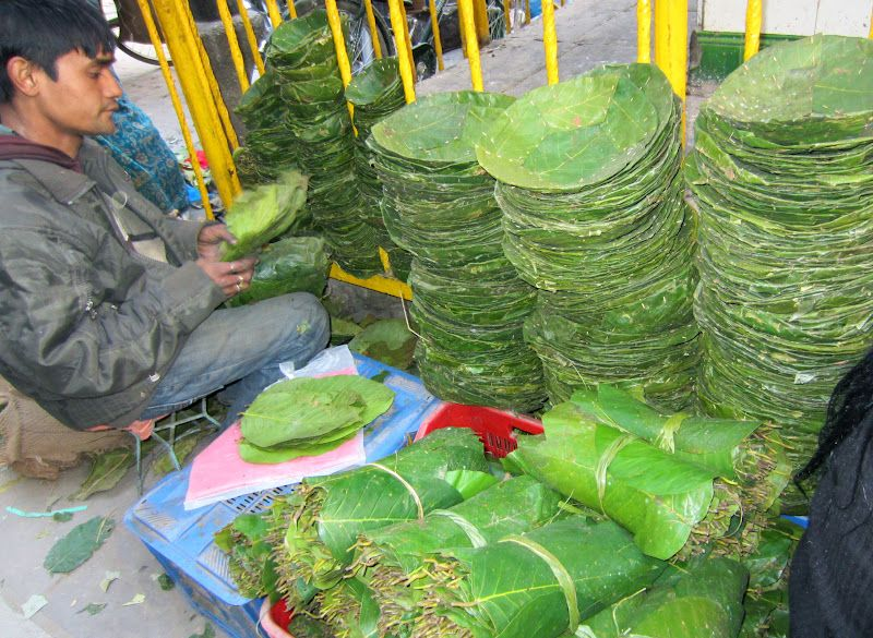 Making of banana leaf plates which replace plastic as a climate solution  sc 1 st  Pinterest & Making of banana leaf plates which replace plastic as a climate ...