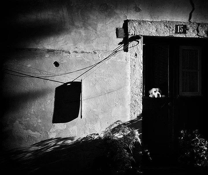 """Postman Is Late""  Alfama, Lisbon, Portugal   By Mirela Momanu"
