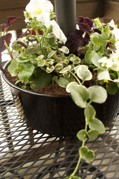 House To Your Home Bundt Cake Pan As Flower Planter Around The
