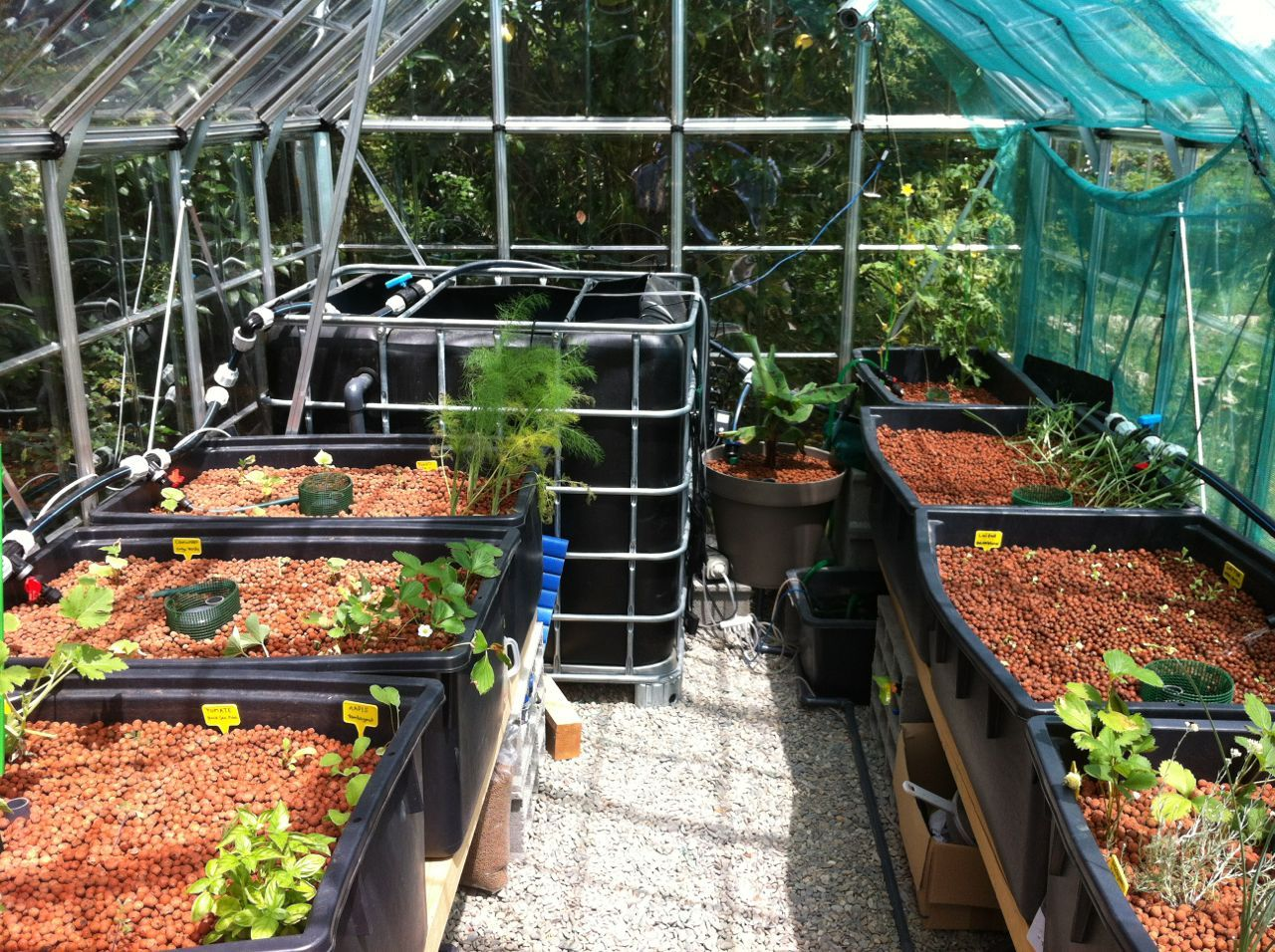 Do It Yourself Home Design: My Own Aquaponics System