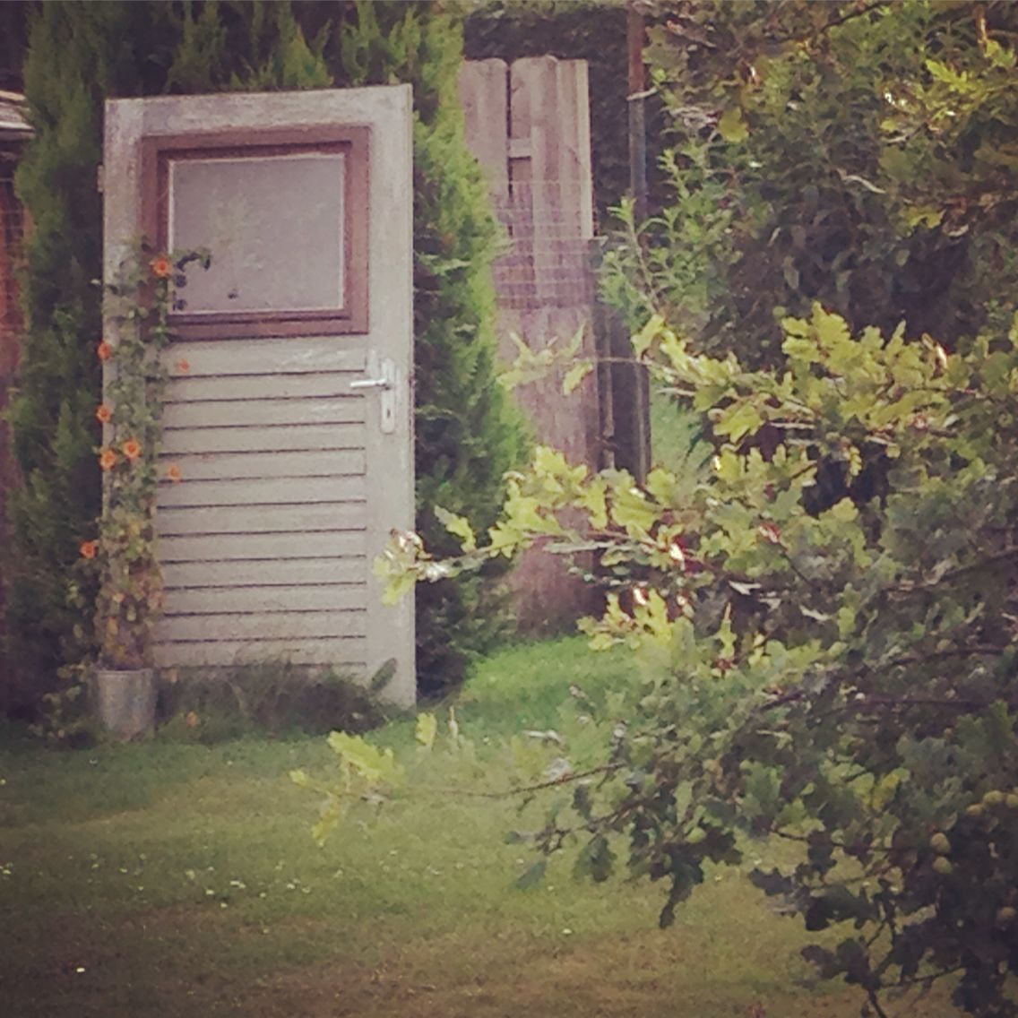 Alte Tür Im Garten / Old Door In Back Yard / Schwarzäugige Susanne