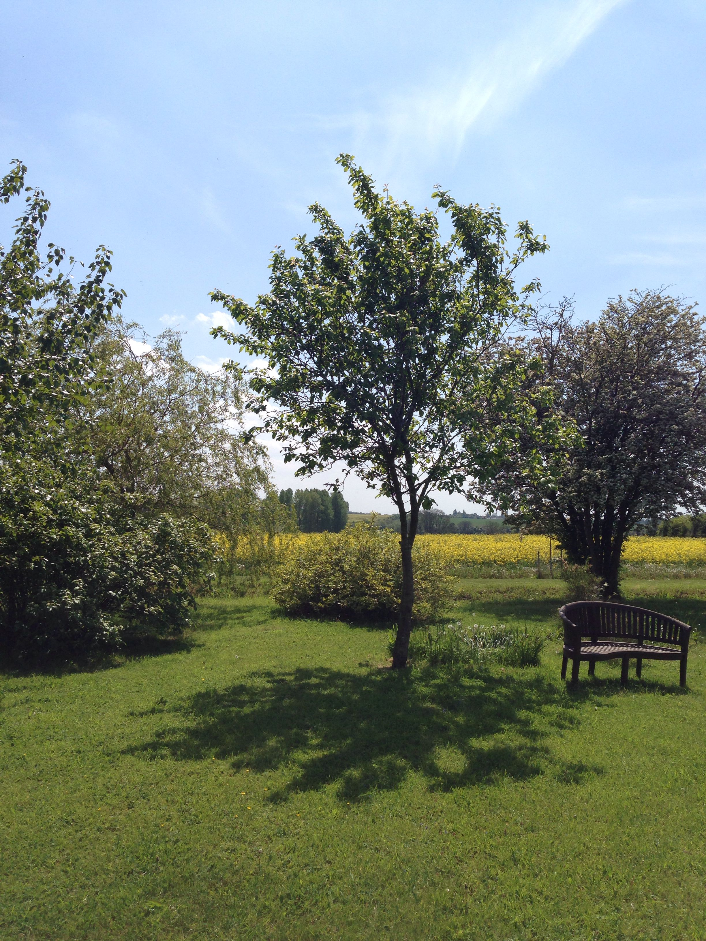 The beautiful garden and grounds at Huntsmill Farm