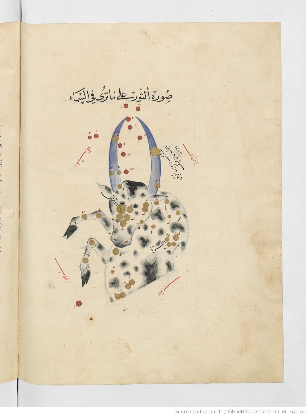 عبد الرحمن بن عمر الصوفي كتاب صور الكواكب الثابتة Bibliotheque De France Taureau Zodiaque