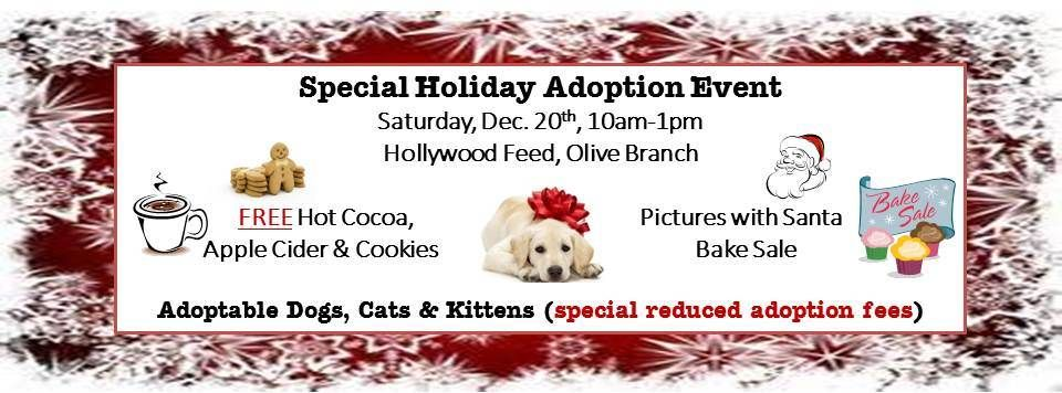 This Will Be Fun Bring Your Family Including Your Pets For