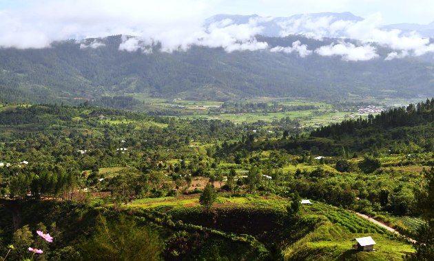 Puncak Genting Dan Sinebuk Green Di Gayo Lues Seputar Aceh National Parks Aceh Nature Photography