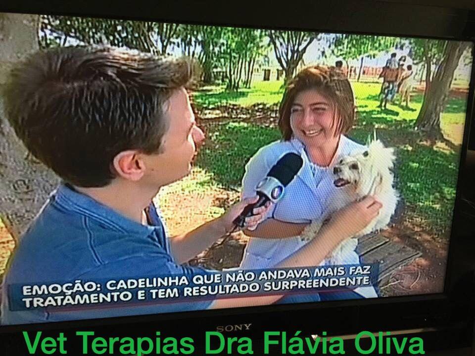 Reconhecimento profissional é tudo..cachorra Cindy era tetraparalítica...Vet Terapias a reabilitou!