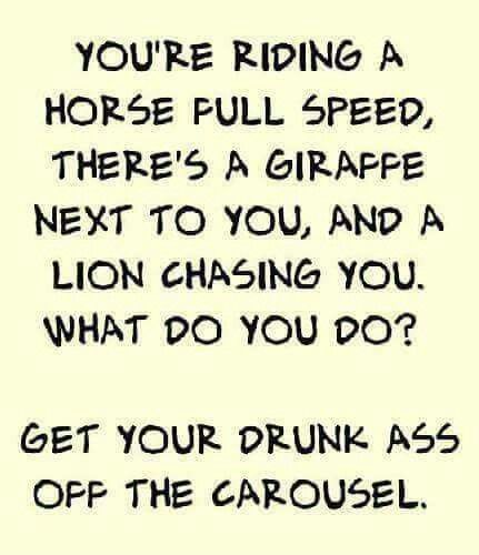 I couldn't stop laughing. I told you it wasnt a good idea at P.P.P. but you insisted.. dont drink and ride...
