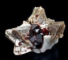 Image result for https://mineral specimen cabinets
