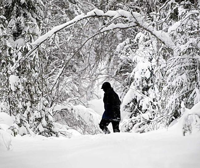 Vuosi 2011 alkoi Pohjois-Suomessa kipakassa pakkassäässä. Myös lunta satoi alkuvuodesta runsaasti.  Kuva: Jarmo Kontiainen