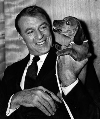 Actor Gary Cooper with his pet dachshund Dyna. >Vintage Photo #dogs #pets #Dachshunds  Facebook.com/sodoggonefunny