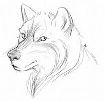 Image result for easy thing to draw for beginners step by