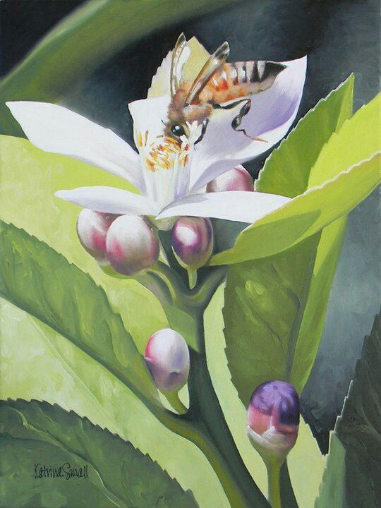 Bee-utiful, oil - Katrina Small